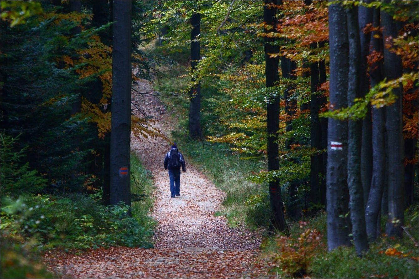 Samotna wyprawa – czy jest się czego bać?